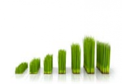 healthy-crop-Limex