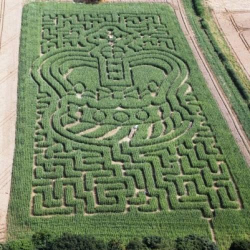 Maize Maze Marking